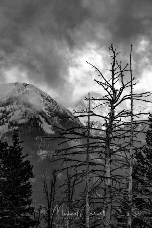 Rocky Mountain Storm