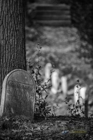Mount Hope Cemetery 6