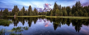 Peace at Schwabacher Landing II