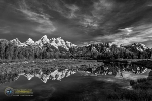 Schwabacher Morning