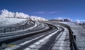 Alpaca Drive