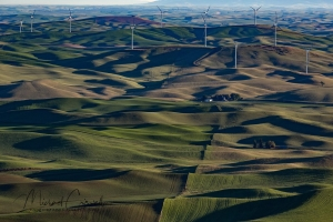 Lines of Palouse