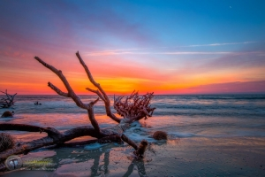 Dawn on Hunting Island